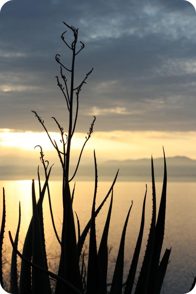 The sunset at Lake Albert