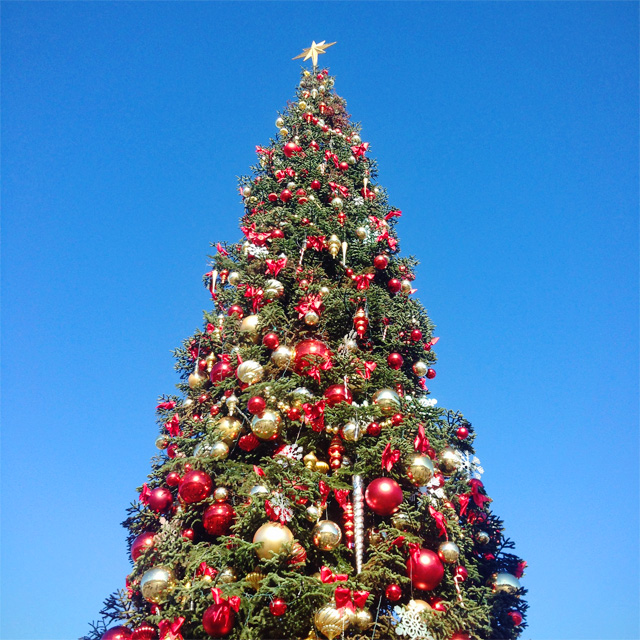 Christmas tree at Fisherman's Wharf