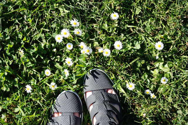 Topshop shoes and dasies