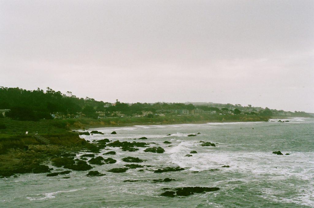 Elephant Seal beach Big Sur