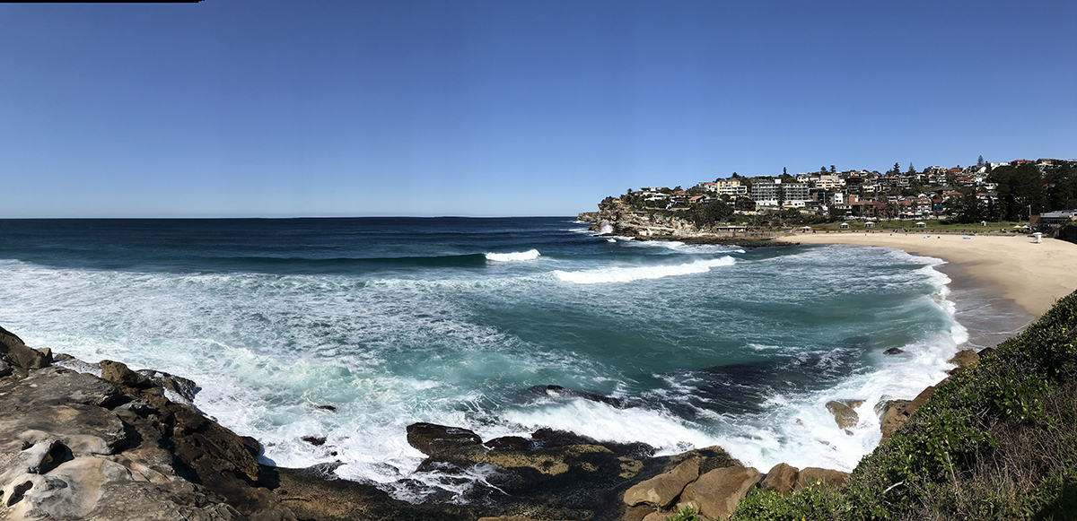 Coggee to Bondi walk